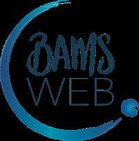 BAMS WEB logo